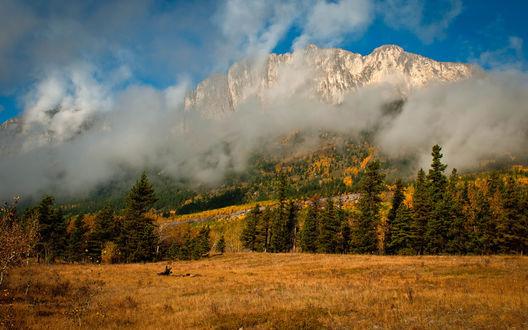 Обои Пожелтевшая трава у подножия горы, укутанной в низкие облака