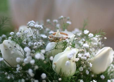 Обои Свадебный букет и обручальные кольца