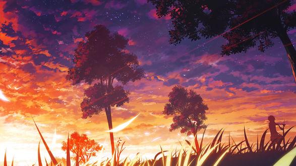 Обои Ребёнок смотрит на закат посреди лесной поляны, арт