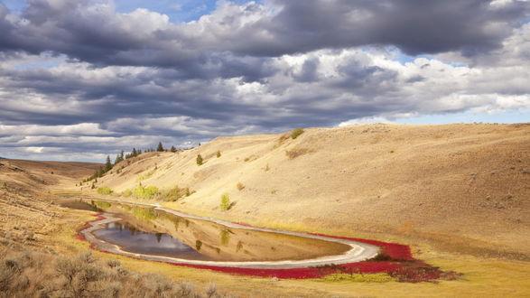Обои Это мелкое озеро в песчаном овраге образовалось после обильных осадков, на его берегах растет разноцветная растительность