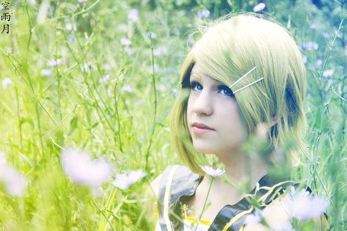 Обои Vocaloid Kagamine Rin / Вокалоид Кагамине Рин в поле, среди высокой травы и цветов, косплей / cosplay (Kuametsuki)