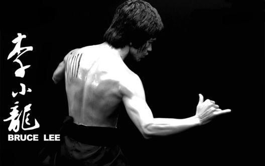 Обои Мастер боевых искусств и актер Брюс Ли /  Bruce Lee