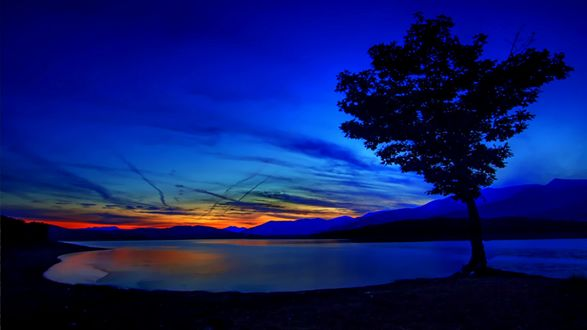 Обои Закатное небо с перистыми облаками над озером с деревом на берегу