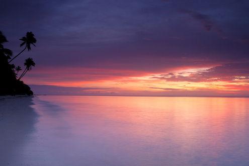 Обои Красивая природа необитаемого острова