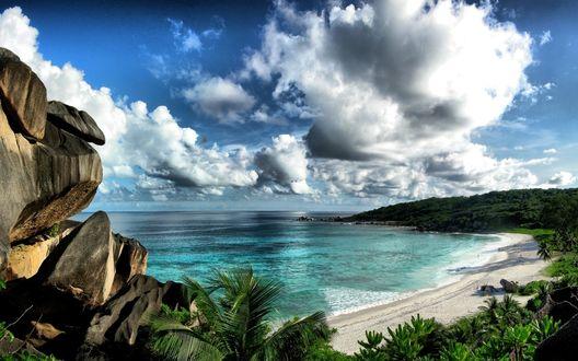 Обои Огромные пушистые облака над пляжем, бирюзовое море и пальмы