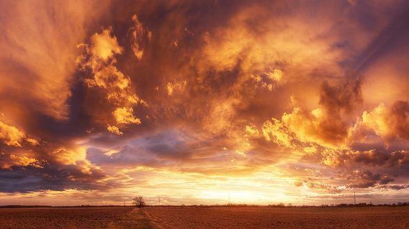 Обои Оранжевые облака над полем на закате
