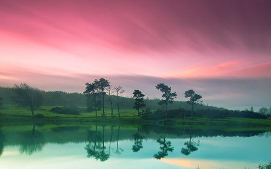 Обои Зеленый пейзаж с озером и деревьями на фоне розового неба