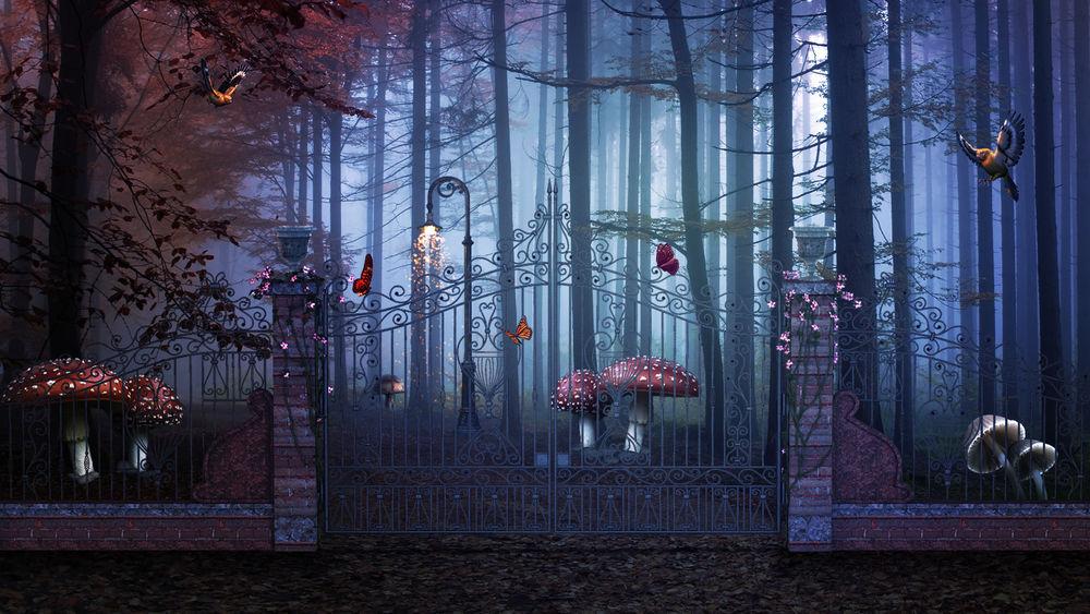 Обои для рабочего стола Ворота в сказочный лес, с огромными грибами, бабочками и птицами