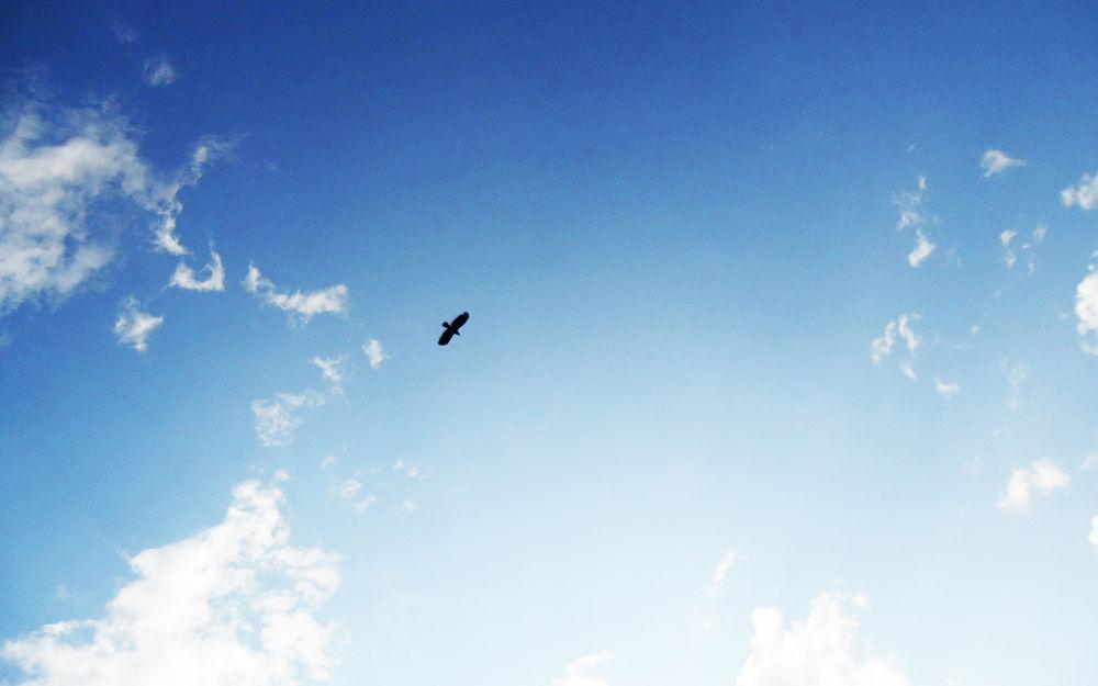 голубое небо обои для рабочего стола