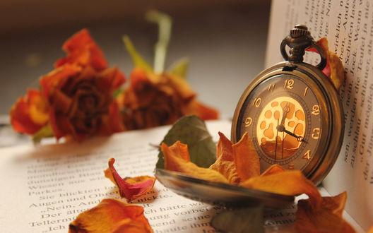 Обои Карманные часы и лепестки роз лежат на раскрытой книге