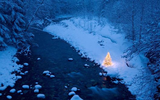 Обои На заснеженном берегу речки в лесу стоит украшенная новогодними гирляндами маленькая елочка