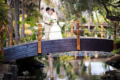 Обои Жених и невеста на мостике, перекинутом через озеро среди пальм