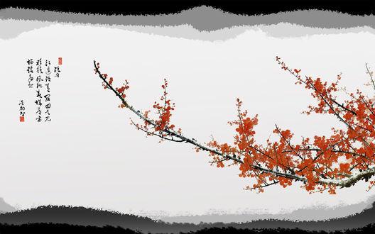 Обои Японские иероглифы и красивая ветка дерева