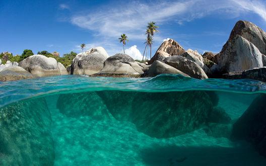 Обои Бирюзовая вода, пальмы и гигантские булыжники (вид над водой и под водой), пляж на Британских Виргинских островах, Карибские острова / The British Virgin island, Caribbean island