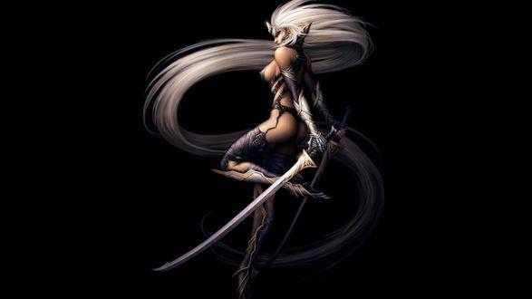 Обои Эльфийка-воин с двумя мечами