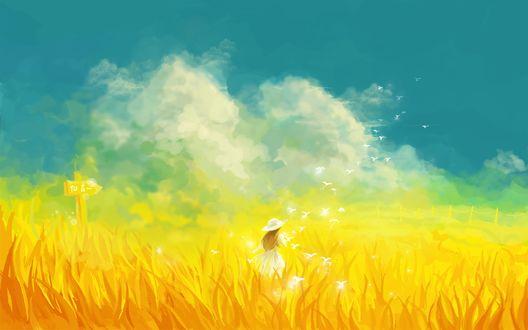 Обои Девушка посреди поля на фоне неба