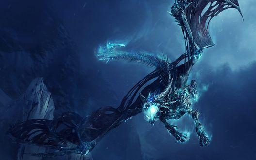 Обои Ледяной Дракон / Ice Dragon из игры World of Warcraft