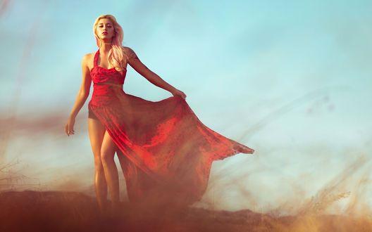 Обои Девушка-блондинка в красном платье стоит в поле
