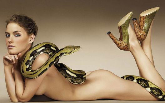 Обои Обнаженная модель Эшли Смит / Ashley Smith лежит, подперев голову руками, с питоном на спине