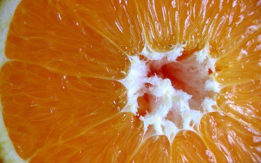 Обои Мякоть апельсина, наполненная соком