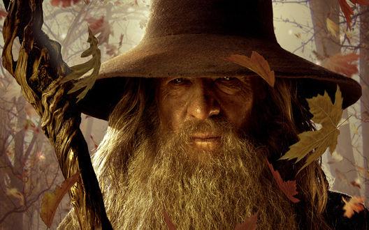 Обои Гэндальф / Gandalf с посохом среди падающих осенних листьев из фильма Хоббит: Нежданное путешествие / The Hobbit: An Unexpected Journey