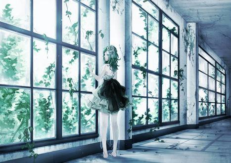 Обои Вокалоид Гуми Мегпоид / Vocaloid Gumi Megpoid смотрит в окно