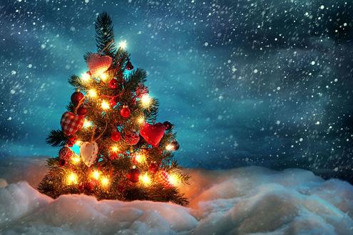 Обои Наряженная ёлка ночью на улице под падающем снегом