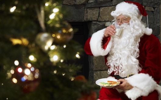 Обои Санта Клаус / Santa Claus пьет молоко и ест печенье возле новогодней ёлки