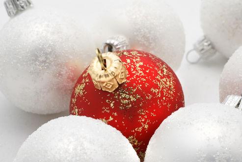 Обои Красный блестящий ёлочный шар среди белых шаров