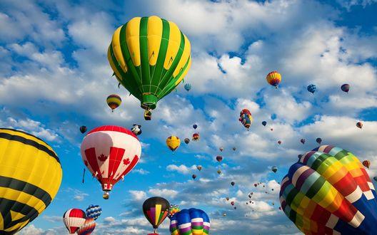 Обои Яркие воздушные шары взмывают в небо