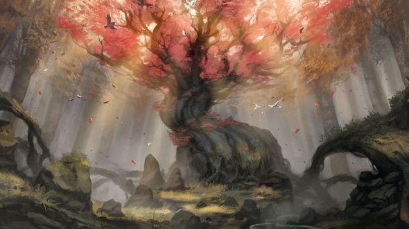 Обои Дерево с огромным стволом и могучей кроной в лесу, вокруг него летают птицы