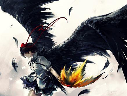 Обои Шамеимари Ая / Shameimaru Aya из игры Тохо / Touhou отбросила в сторону жёлтый парик