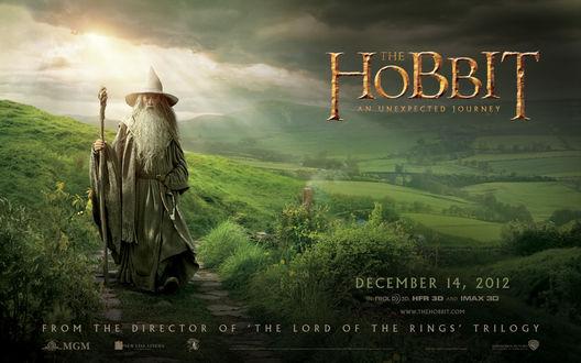 Обои Gandalf / Гэндальф стоит на зелёной поляне на фоне гор, неба и облаков, из фильма Хобиит / Hobbit