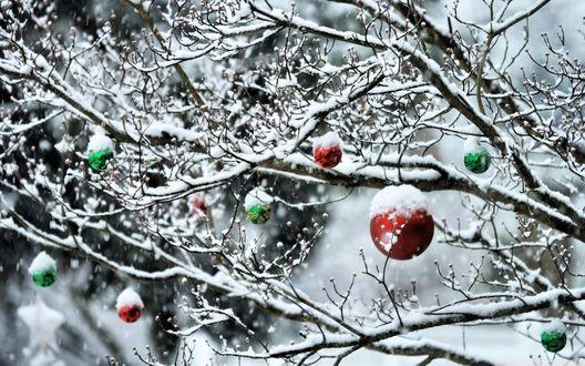 Обои Новогодние игрушки на снежном дереве
