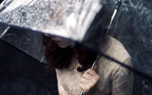 Обои Девушка с каштановыми волосами под прозрачным зонтиком в капельках воды