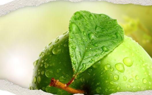 Обои Яблоко с зеленым листочком в капельках воды