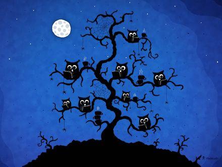 Обои Совы сидят на дереве за ноутбуками при луне, Vladstudio