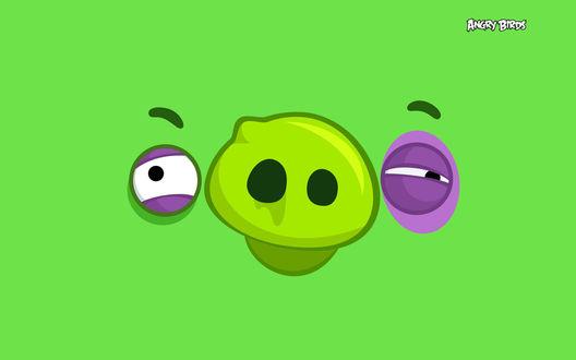 Обои Зеленая свинья из игры Angry Birds / Злые птицы