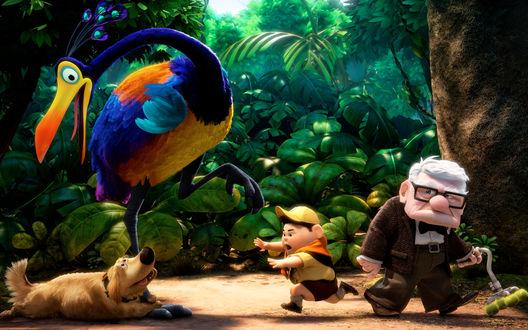 Обои Персонажи мультфильма Up / Вверх идут по джунглям навстречу путешествиям