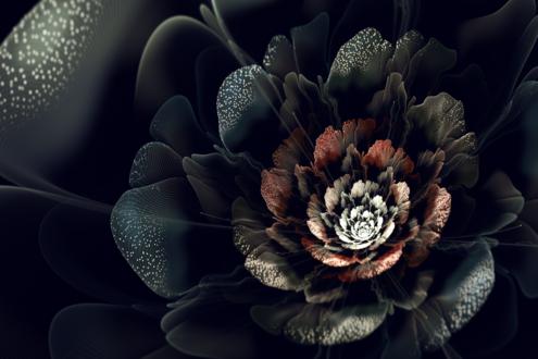 Обои Красивый чёрно-коричневый цветок на чёрном фоне
