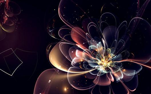 Обои Красивый разноцветный фрактальный цветок на чёрном фоне