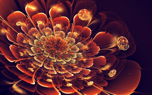 Обои Абстрактный красно-жёлтый цветок на чёрном фоне