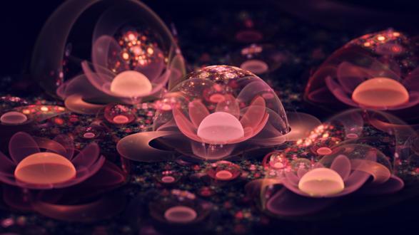 Обои Розовые цветы под прозрачными купалами