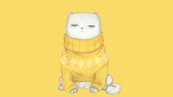 Обои Голубоглазый белый кот в желтом вязаном свитере
