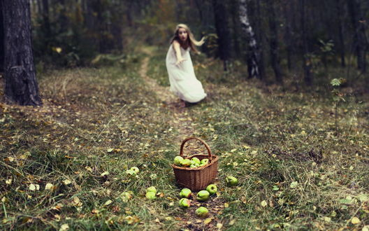 Обои Девушка в белом платье в лесу тянется к корзинке с яблоками
