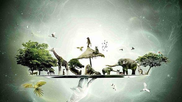 Обои Рука мужчины держит поднос, на котором дикие животные: слоны, жираф, лев, носорог, птицы, попугаи, кенгуру, волк, сурикат