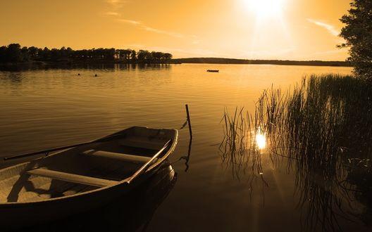 Обои Рыбацкая лодка, привязанная к торчащей из воды палки возле береговой осоки озера на фоне вечернего неба с заходящим солнцем