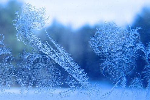 Во сне морозные узоры