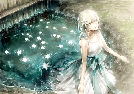 Обои Девушка стоит в воде, в которой плавают белые цветы