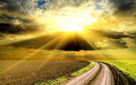 Обои Яркие лучи солнца над дорогой, разделяющей поля
